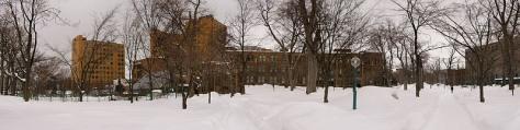 Petit aperçu du parc de l'université