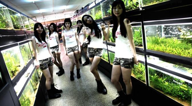 Cold Fish (Sion Sono – 2010)