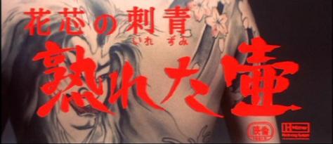 rose noire écran titre