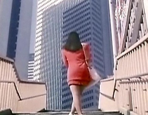 Pleasure Masturbation : New Wife Version, d'Hisayasu Satô (1993)