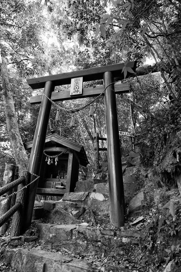 tori-escaliers