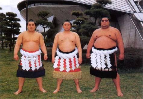 wakanohana-takanohana-musashimaru